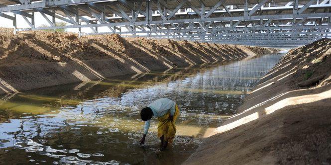 Ấn Độ, Nhật Bản: Tận dụng từng tia nắng, từng mét đất